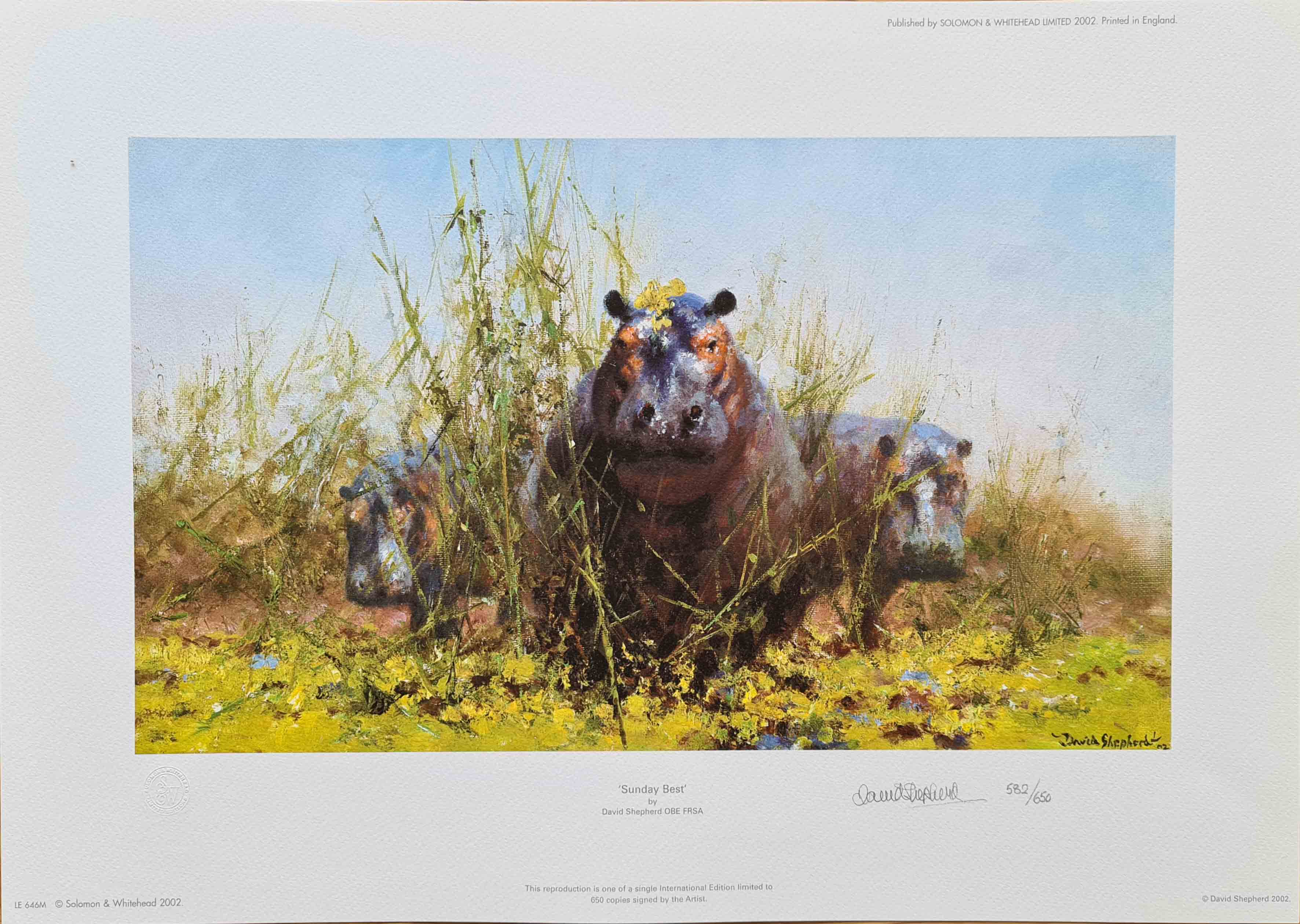 David Shepherd, hippos, signed limited edition print