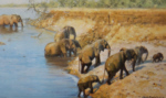 david shepherd crossing elephants, signed, limited edition, print