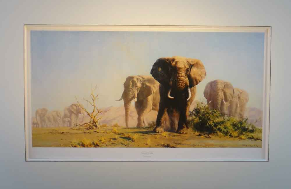 David Shepherd the ivory is theirs mounted