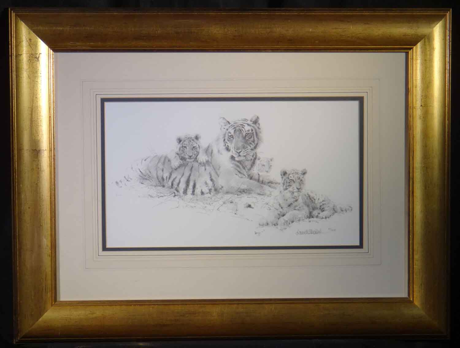 david shepherd Tiger and cubs  sketch