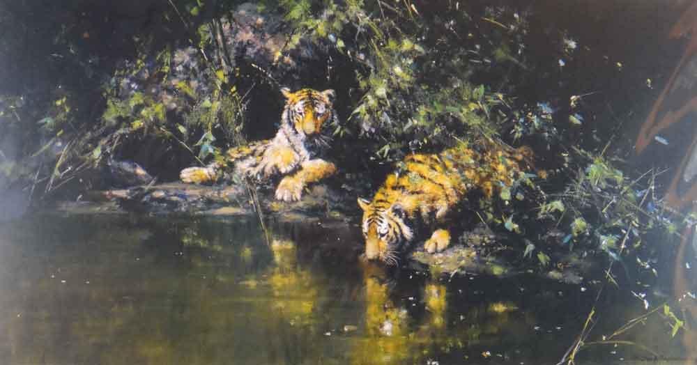 david shepherd tiger haven