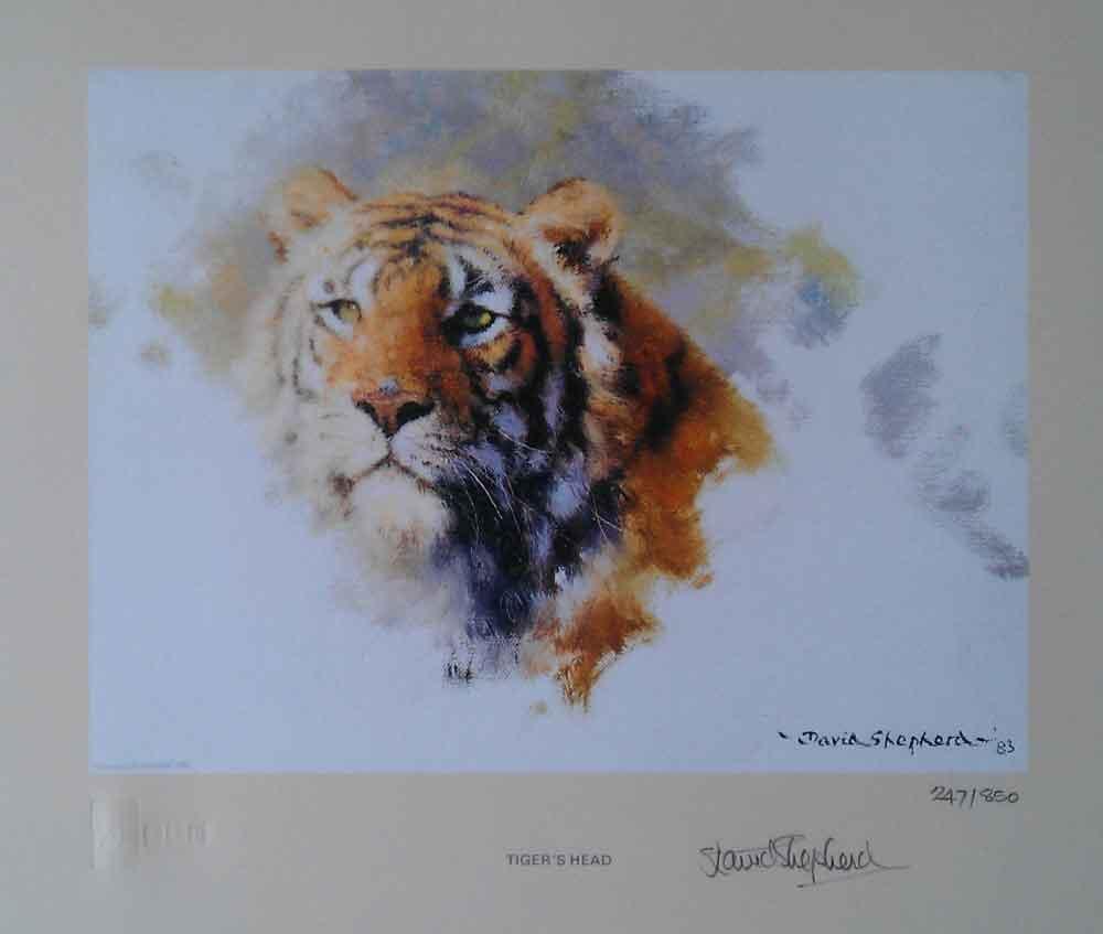david shepherd tiger's head 1983
