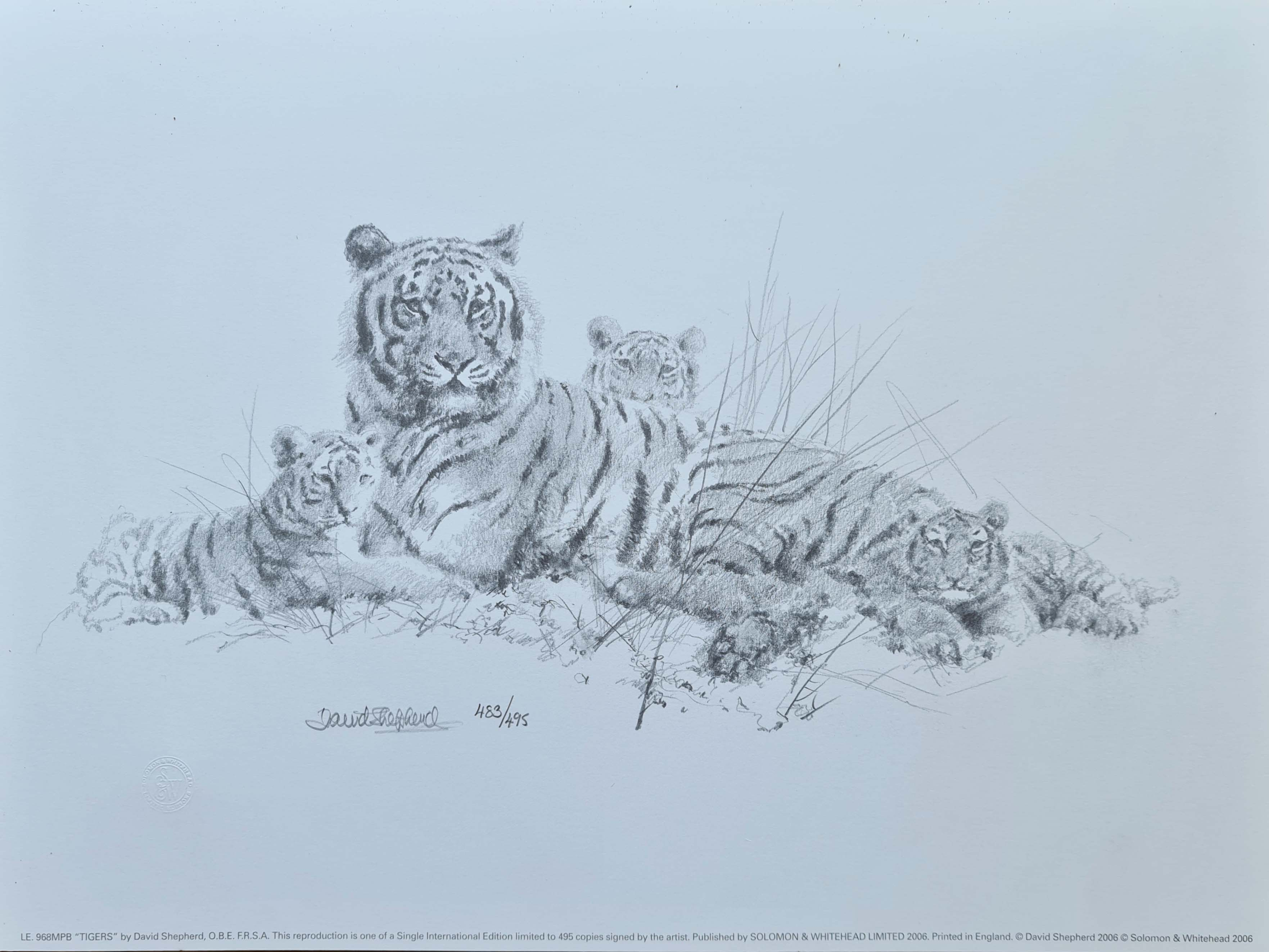 david shepherd Tiger sketch