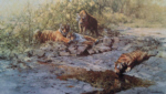 david shepherd signed limited edition print tigers of bandhavgarh