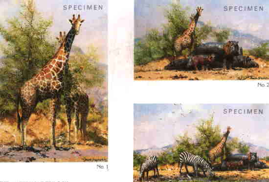 david shepherd, Waterhole Trilogy, print