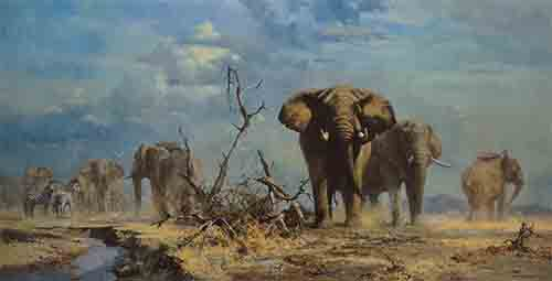 david shepherd, The Welcome Storm elephants print