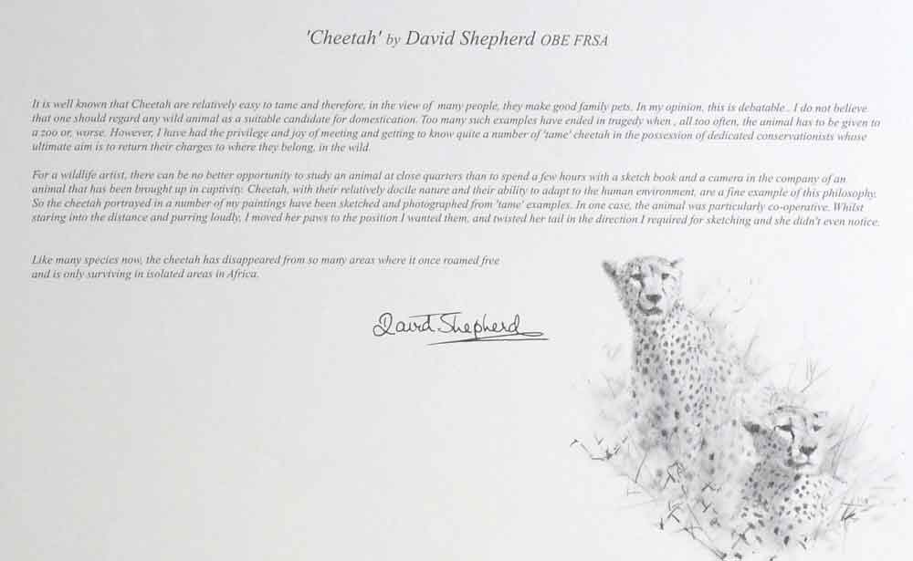 david shepherd wildlife of the world Cheetah