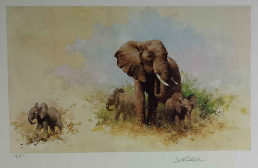 david shepherd wildlife of the world Elephant and babies, portfolio