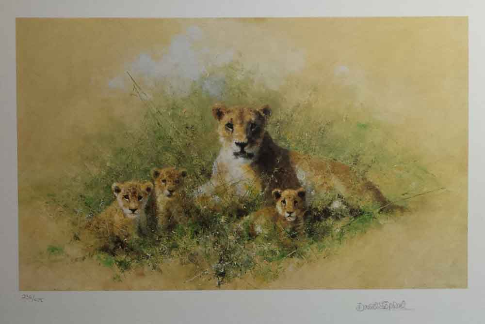 david shepherd wildlife of the world Lioness and Cubs, portfolio