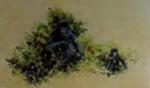 david shepherd Mountain gorilla print