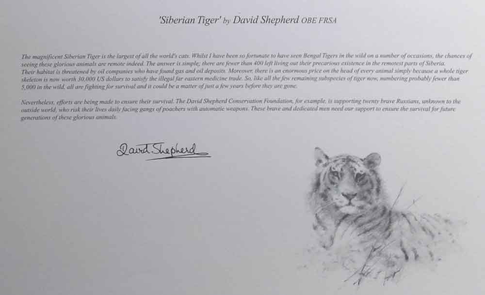 david shepherd wildlife of the world Siberian Tiger, text