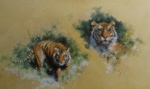 david shepherd Siberian Tiger print