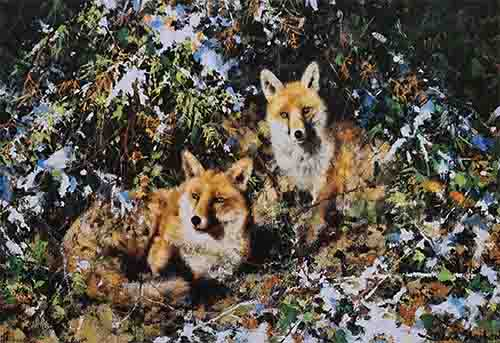 david shepherd Foxes prints