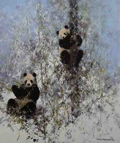 david shepherd, winter in Wolong, pandas, print