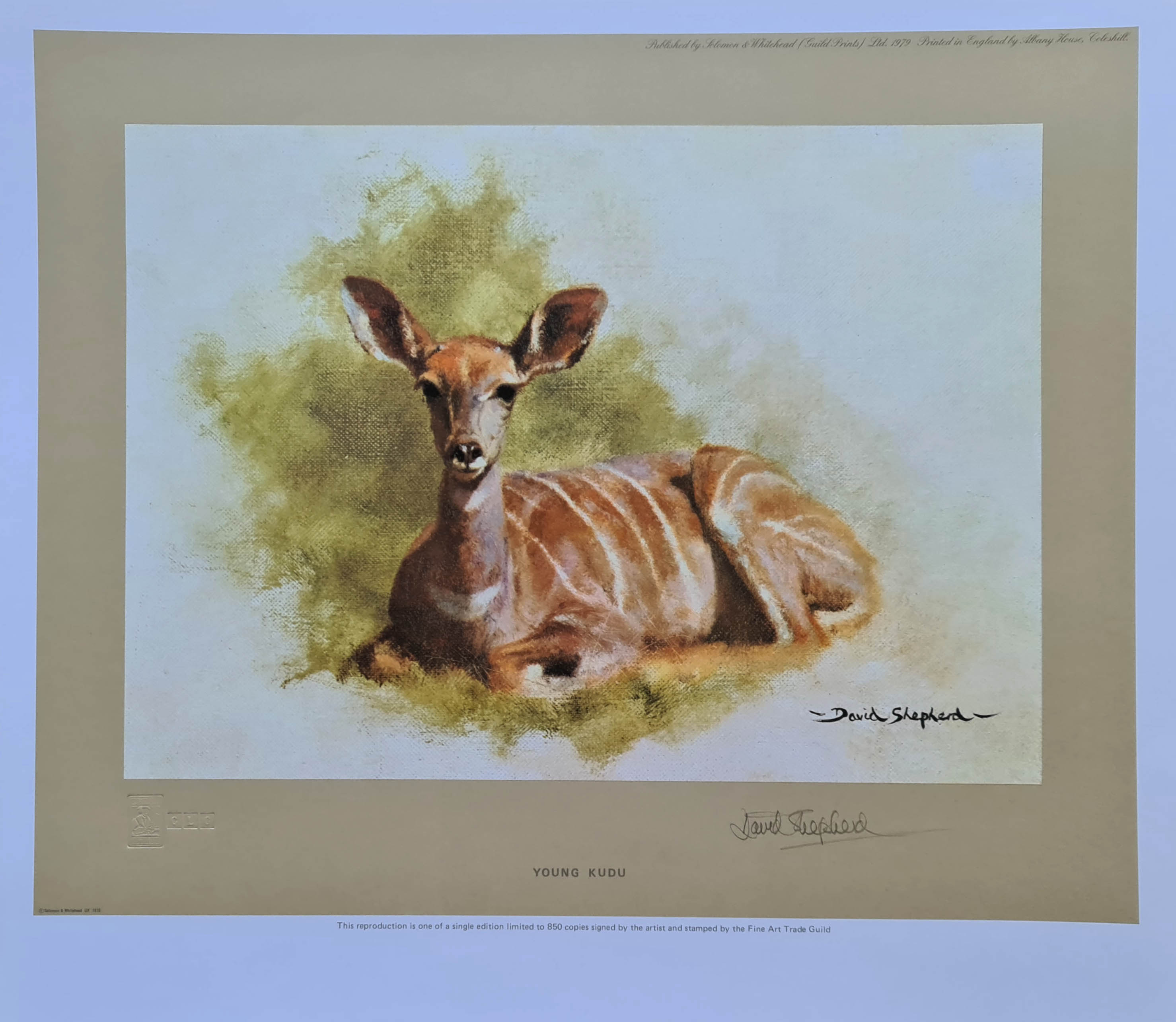 shepherd youngkudu signed print