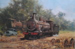 david shepherd, Zambezi sawmills railway, steam trains