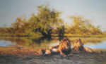 david shepherd zambezi waterhole