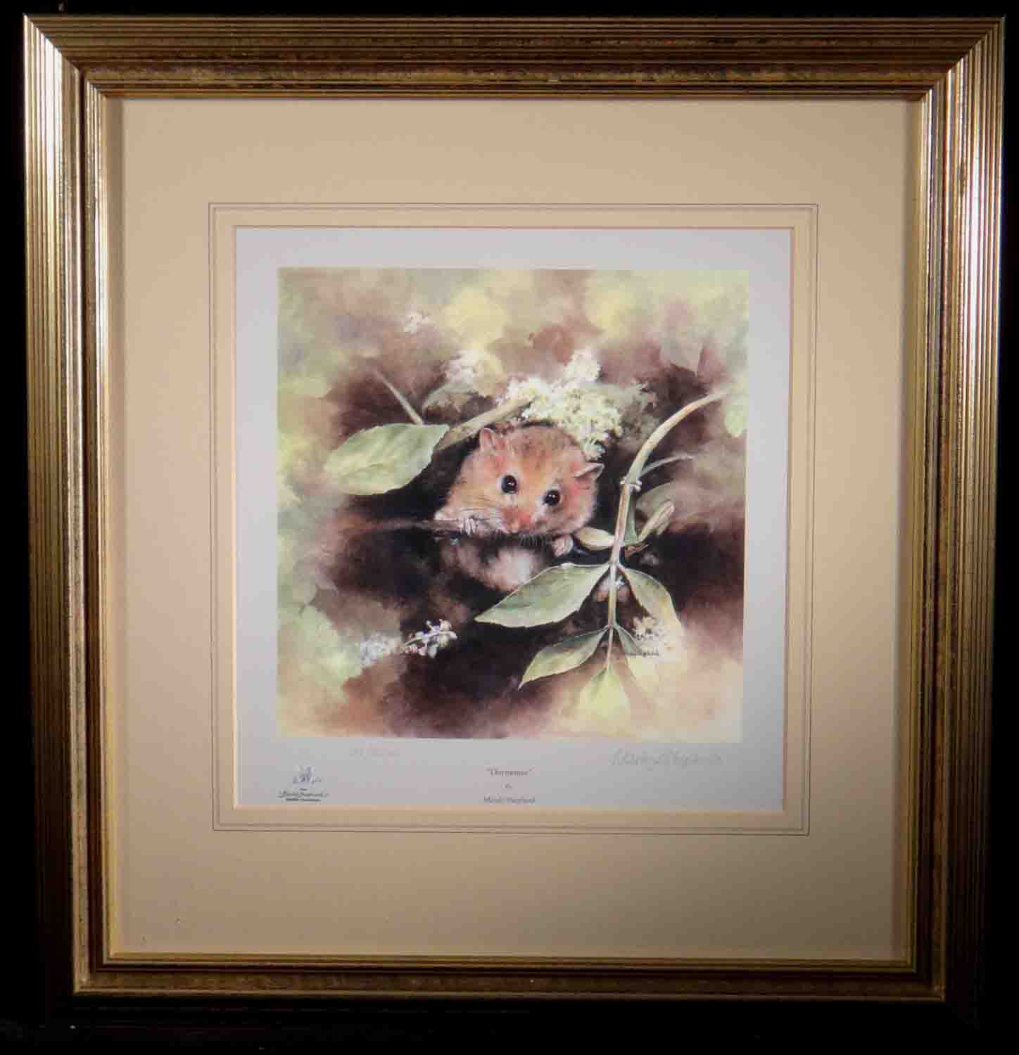 mandy shepherd, dormouse, signed limited edition print
