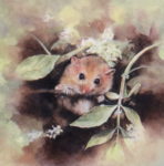mandy shepherd dormouse print