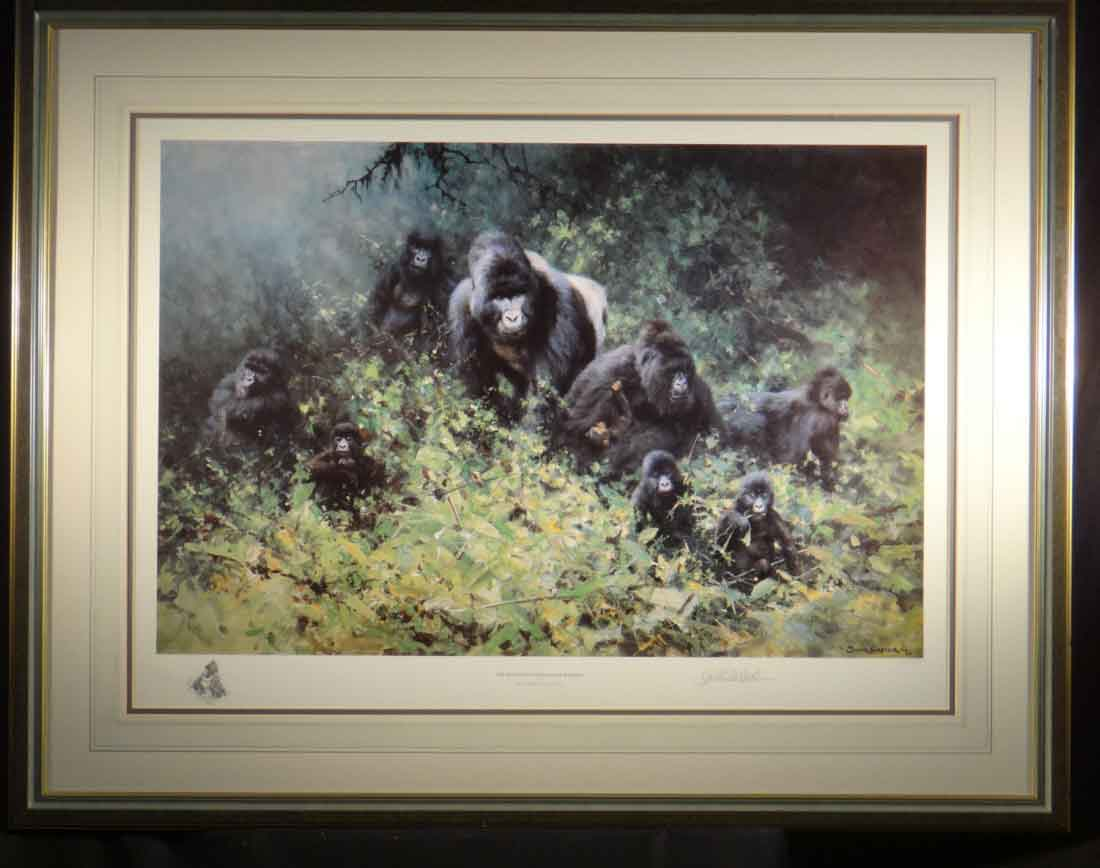 david shepherd mountain gorillas of rwanda, framed