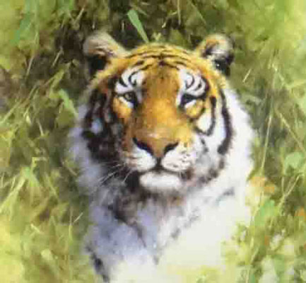 David Shepherd, limited edition print, Tigers